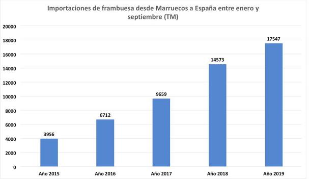 Importaciones de frambuesa desde Marruecos a España entre enero y septiembre
